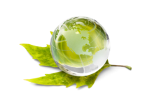 Photo of REA Group commits to carbon neutrality