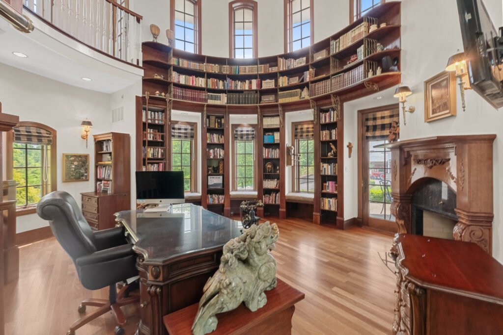 beauty and the best library in mansion