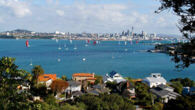 New zealand property pain and gain property market